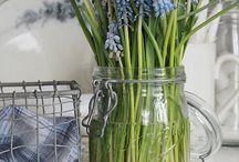 Bloemen&planten