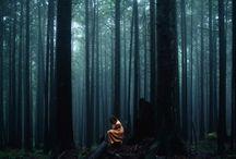 Tree / by Saeed