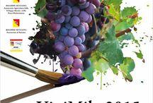 Degustare...non tracannare,,, / Sorseggiare un bicchiere di vino è sentirne la provenienza, i sapori e i profumi della sua terra....