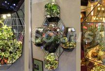 interior design, Флариум от So just / So just представляет вам ФЛАРИУМ.   Это экосистема c живыми растениями из стекла и металла.  Что туда посадить, куда повесить или поставить- решаете вы!  Бесспорно лишь то, что флариум удивляет, останавливает на себе взгляд, заставляет задуматься и не оставляет равнодушным...
