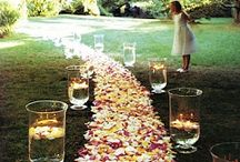 Decorating with roses / by Mary Quintana Salgado
