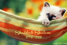 Shalom from Ecuador / Hebrew Roots Ecuador, Torah, Shabbat, Feasts, Ahava, Messianic, Yahweh, Yahuah.