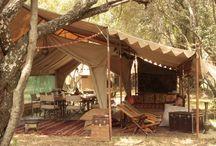 Camping-Glamping