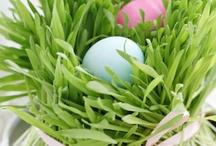 Easter / by Helen Christiansen