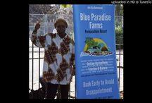 Jamaican Diaspora # 7