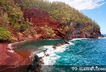 Hawaii?