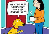 Go for a walk / Dogs need exercise - and so do we