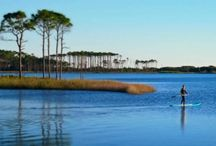 WaterColor Florida Real Estate / WaterColor Florida is one of St. Joe's premier communities located on Northwest Florida's Gulf Coast.  White sand beaches, emerald waters, green pine forest, and a 220acre coastal dune lake – all are just a part of the WaterColor experience.