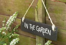 In the Garden / My favorite place. / by Jayne Shaw