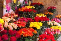 Bloemenevenementen getipt door Marie-Fleurie Bloemenatelier / Tips voor inspirerende bloemenuitjes