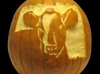 Halloween / Pumpkins!