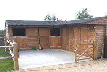 sazzys stable