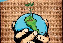 Muros Verdes / BROTE URBANO tiene la huerta que esperabas, diseño, calidad, autosustentabilidad, con un producto biodegradable y a un bajo costo. CONOCENOS MAS EN : FACEBOOK.COM/BROTE.URBANO.7 EMAIL   tubroteurbano@gmail.com