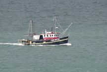 Ships and Boats on the Manukau Harbour / The Ships and Boats on the Manukau Harbour over the last few years....