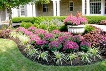 gardeningg