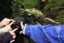 Luokasta luontoon