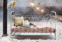 Dream / by Cate Elizabeth