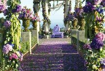 WEDDING | Decoration Gate / Aisle