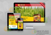 Our Work / Portfolio of CR Web Design Studio