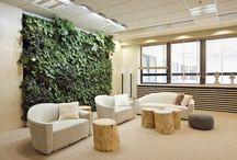 ARTICLE: Eco Design / Eco friendly design, eco interior design, Эко дизайн, зеленый дизайн