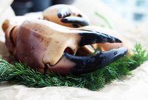 skaldyr   dansk  tekst / krebsdyr eller musling brugt som madvarefx reje, hummer eller østers,  Skaldyr hører til midsommerens største smagsoplevelser. Og det er festlig gæstemad