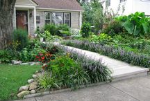 Landscaping for both sides of driveway / by Linda McKinney