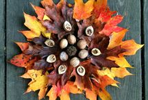 Exploring Nature with children - autumn equinox