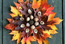 Exploring Nature with children - autumn equinox