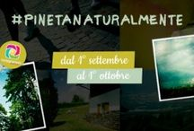 #Pinetanaturalmente  / Su Instagramm il pirmo #challenge fotografico del @Pinetahotels  Legato al contest, infatti, c'è una bellissima iniziativa solidale Come è molto semplice. Tramite il vostro profilo Instagram scattate foto che ritraggano la natura, i paesaggi più belli d'Italia, la vostra idea di sostenibilità. Condividete gli scatti sulla piattaforma utilizzando necessariamente i tag #pinetanaturalmente e #igersitalia