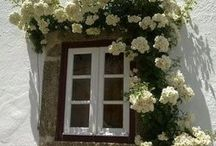 windows and doors of the world..pretty,rustic, unusual, great outlooks