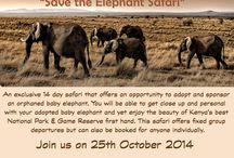 Safari Fixed Departures / Our organised Safaris. For info and booking contact us at info@sunworldsafaris.com