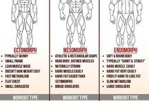 body anatomy and health.
