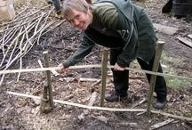 Sustainable Woodland Management with Ben Law / Mon 7th - Fri 11th Nov 2016  This 5-day training course in Sustainable Woodland Management is run at our Centre in the Hampshire South Downs and Ben Law's woodland nearby.