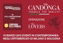OPERAZIONE LOVERS 5 MARZO 2015 / Operazione Lovers tenutasi il 5 Marzo 2015, in contemporanea negli ortomercati di Milano e Bologna. #candonga #fragola #top_quality #Basilicata #italia #spreafico