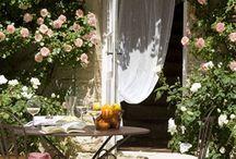 Garden Glories