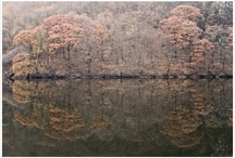 In Korea / My photography in korea / by Jaehyeok Lim