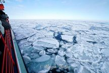 "Riding the Glacier Icebreaker ""Garinko No. II"", I Went to See the Floating Ice! / There are only 3 places in Japan where you can enjoy a drift ice cruise: Rausu, Abashiri and Monbetsu. Towards the white sea ice visible on the other side of the horizon, embark!"