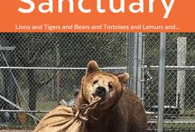 Elmira's Wildlife Sanctuary / Elmira's Wildlife Sanctuary: A completely volunteer-run facility caring for and enriching the lives of 50 wild animals who came to them for various reasons.