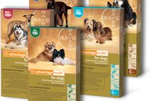 Our Flea Prevention Products