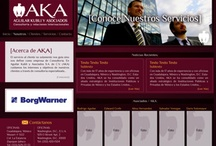 Our Work (web section)