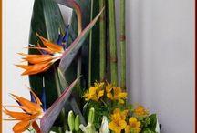 Aranžmá květin