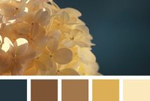 Colour palettes for future illustrations