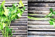 Rośliny... na zdrowie!