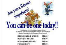 NORTH CAROLINA ANIMALS IN NEED / ALL ANIMALS DESERVE A WONDERFUL LIFE PLEASE ADOPT DONT SHOP