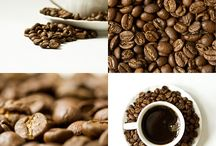 Coffee / All aboout coffee