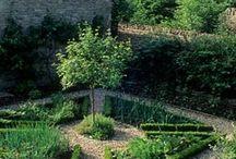 Garden design / by Melissa Thomas