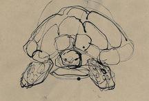 MY DRAWINGS / my drawings  author: Aleksandra Kucharczyk www.aleksandrakucharczyk.pl