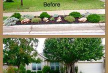 texas.yard&garden / Great ideas for your Texas yard and garden!