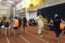Phishy Appearances / Our collection of photos from Phishy appearances around the RIT campus. / by RIT InformationSecurity