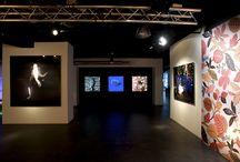 Nuestro Showroom / Showroom de innovación